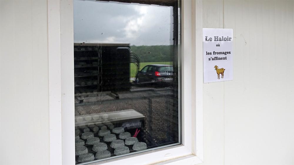 La salle d'affinage des fromages