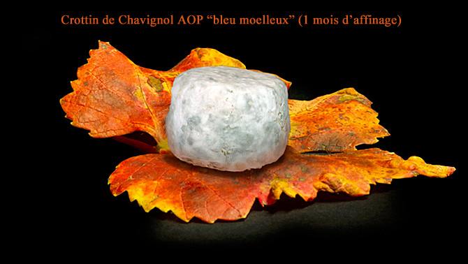 """Crottin de Chavignol fermier """"bleu moelleux"""" affiné 1 mois - Crédit photosite www.romaindubois-affineur.com"""