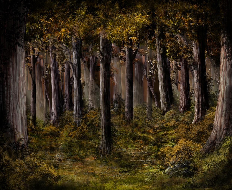 Herbstwald 02