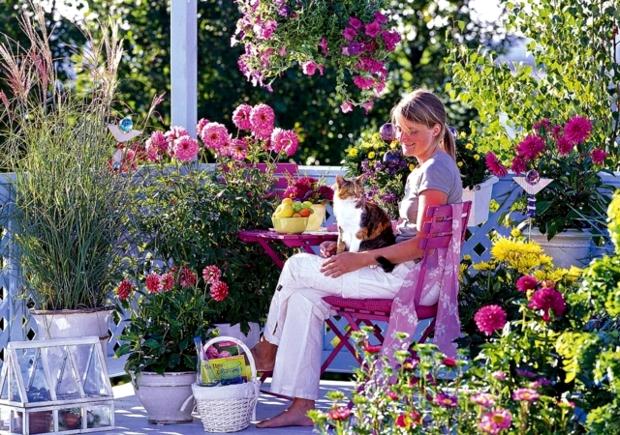 Balcone: che piante ci metto?? - Signorelli Art & Flower Craft
