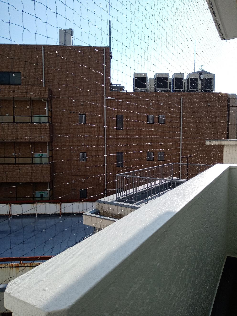 神戸市での鳩よけネット施行