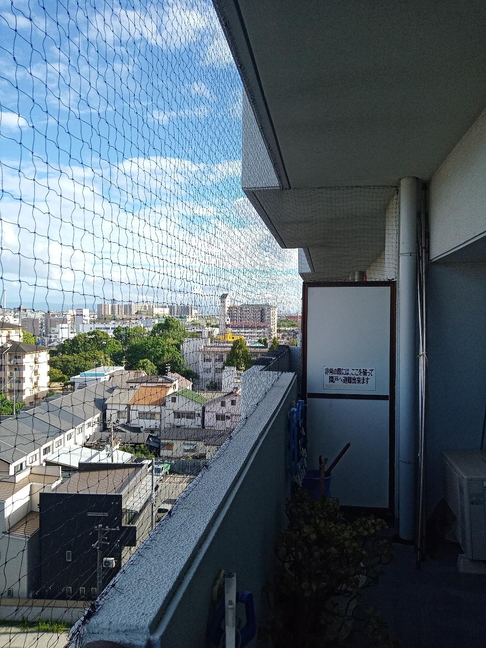 尼崎市での鳩よけネット施行