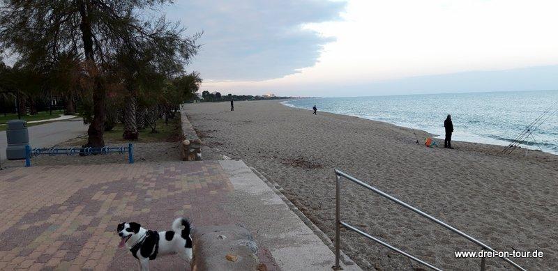 hinter dem Yachthafen beginnt der weitläufige Strand