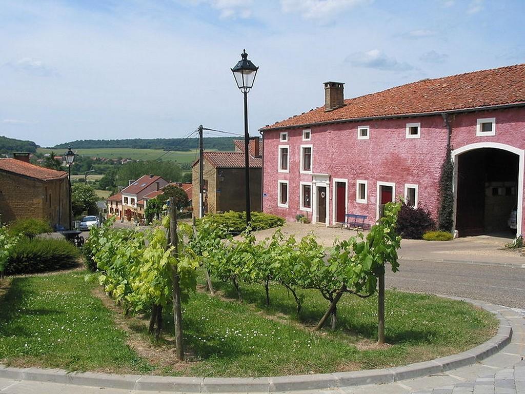 Torgny - La ferme rose