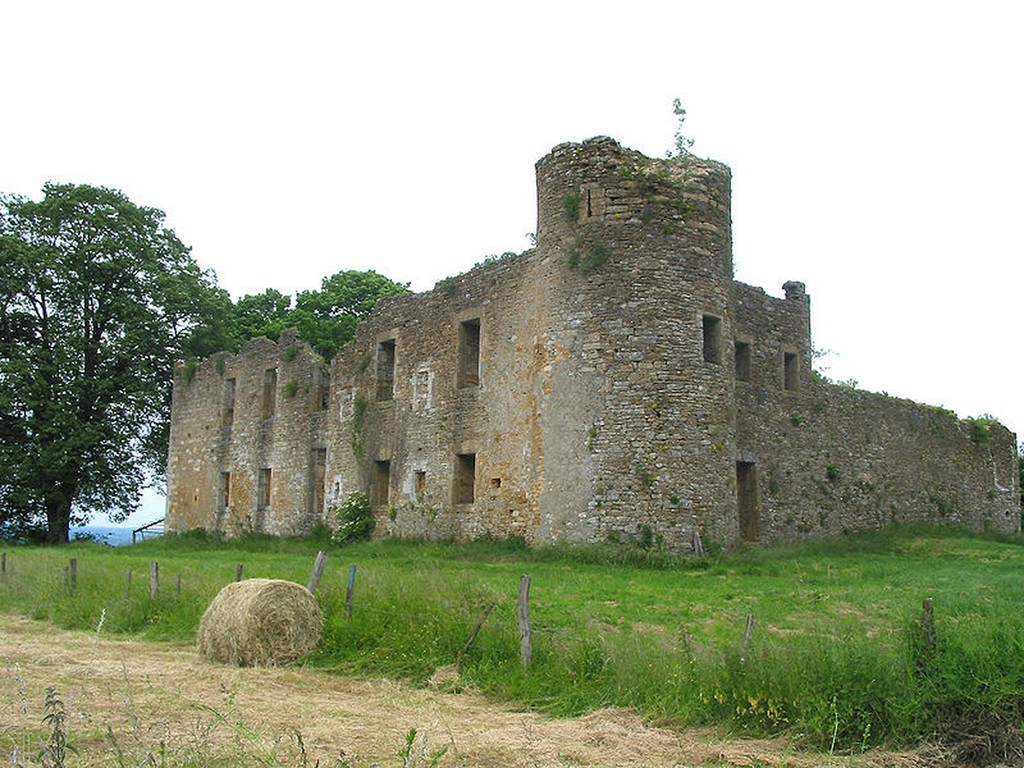 Montquintin Ruines du château