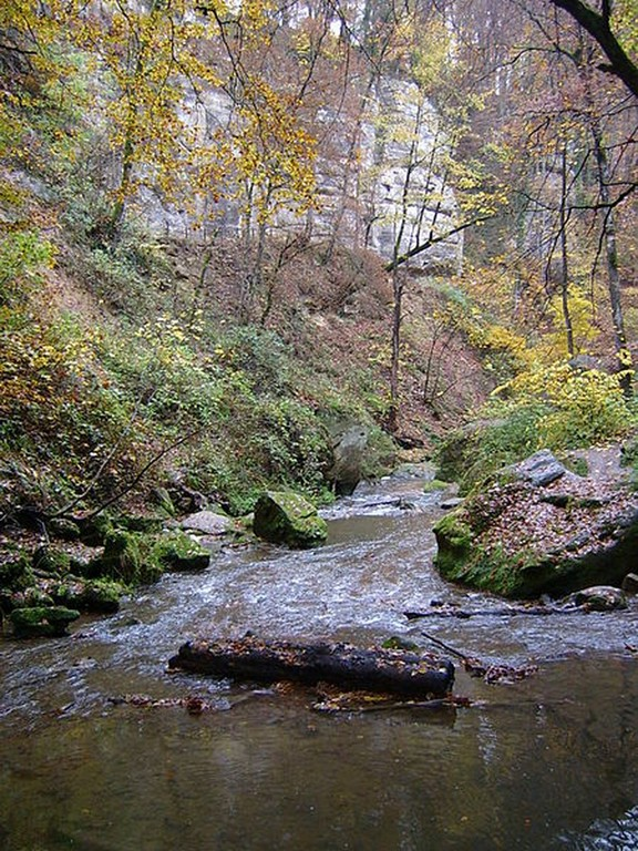 Luxembourg - Mullerthal - Paysage typique