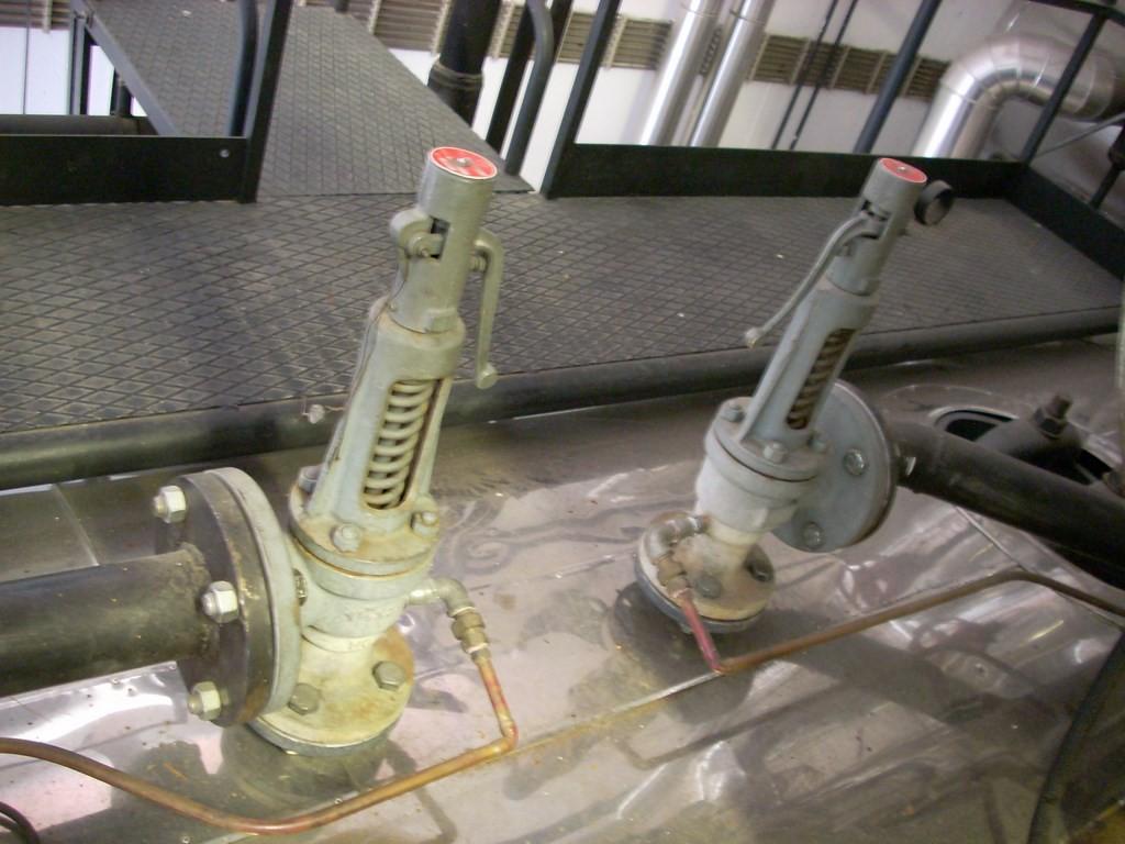 Valvole di sicurezza generatore di vapore