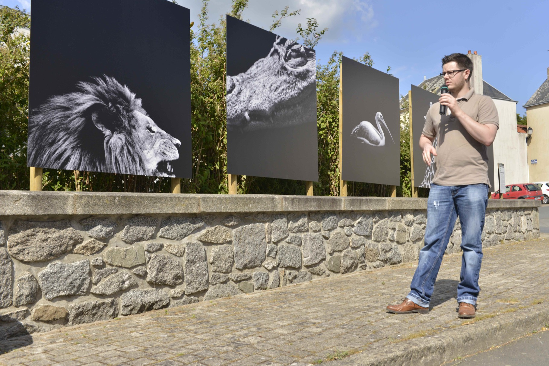 """Dark zoo"" Nicolas Evariste"