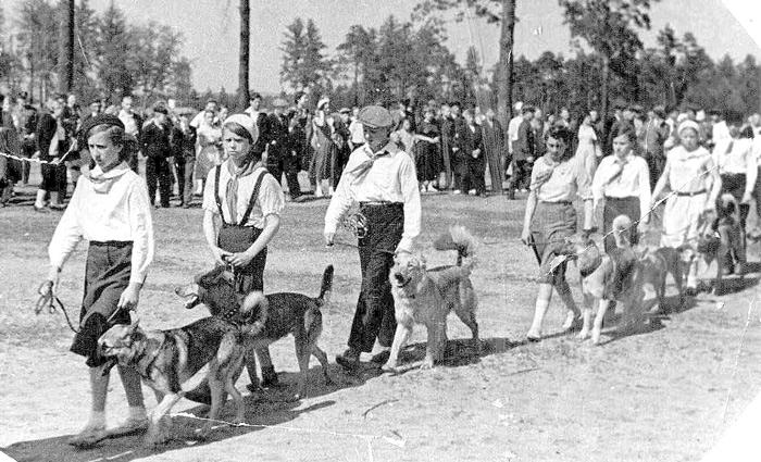 Юные собаководы. Летний лагерь в Сосновке. 1939 г. Фото из семейного архива Е.Ераниной.