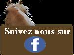 suivez nous facebook kalin