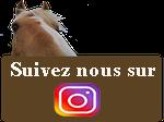 suivez nous instagram kalin