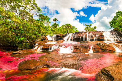 River of Six Colors, Caño Cristales
