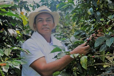 Coffee Farmer at Minca