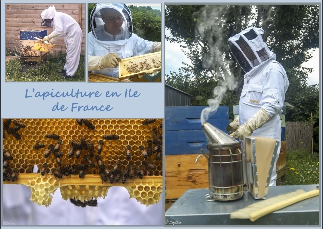 Christophe GERVAIS - Apiculteur en Ile de France