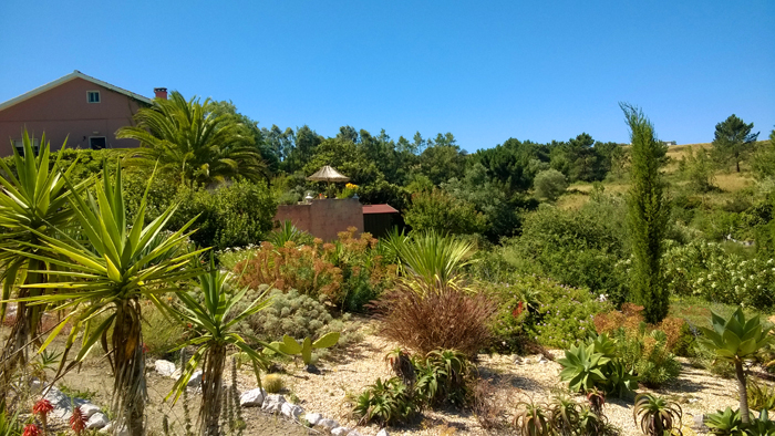 Garten garden enthusiasts in portugal - Drainage garten lehmboden ...