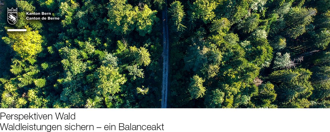 """Fachveranstaltung """"Perspektiven Wald"""""""