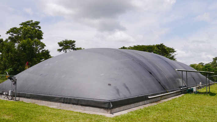 lagoon digester for dairy waste