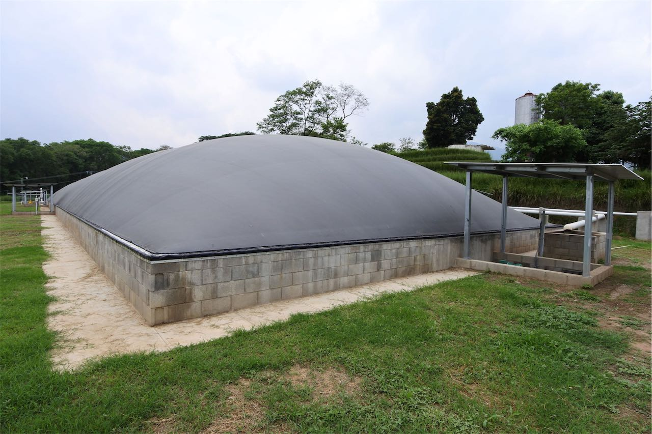 Covered lagoon digester - poultry waste - chicken droppings