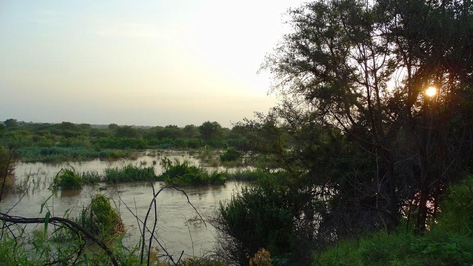 Tansania 2016