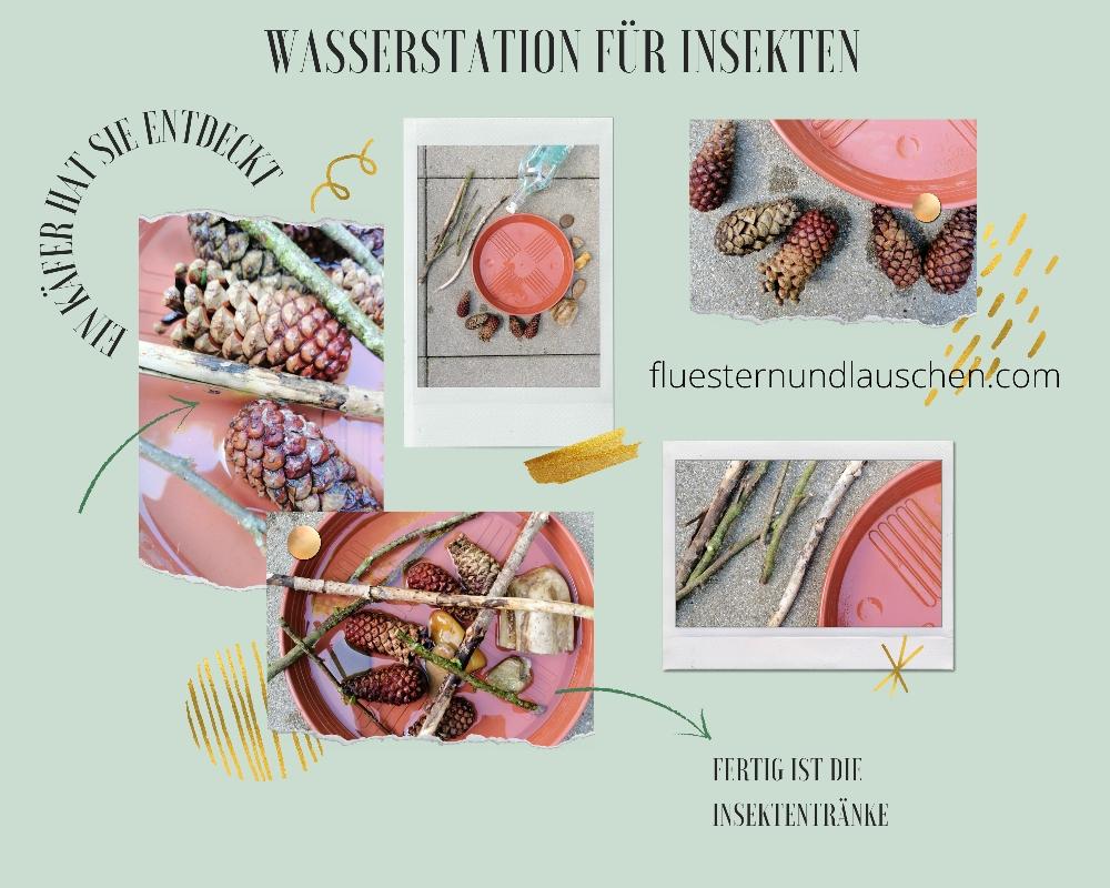 DIY Insektentränke