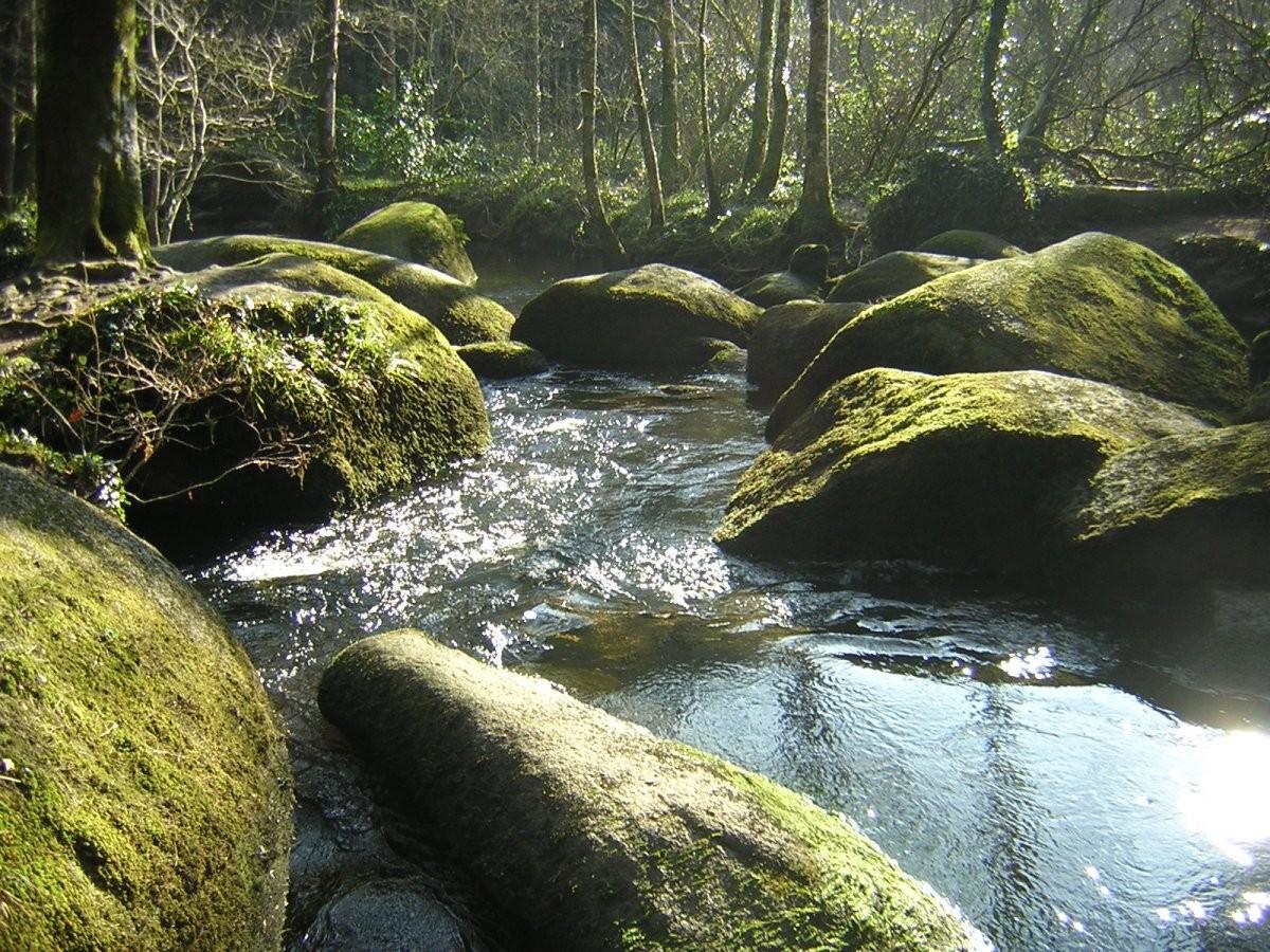 Forêt de Huelgoat, rivière d'argent