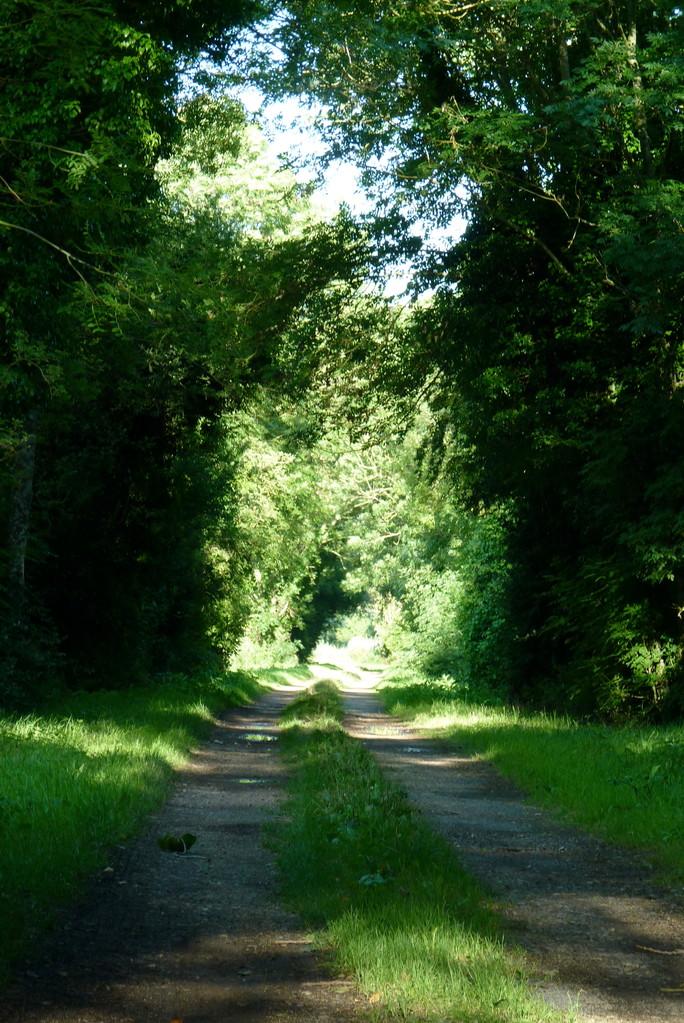 Sous La Garenne - Chemin de randonnée