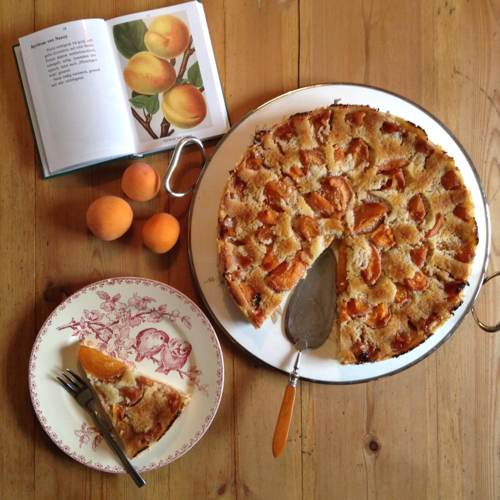 Aprikosentarte mit Frangipane gebacken