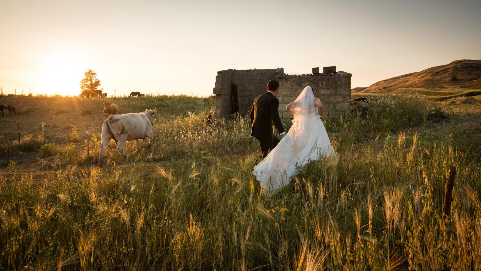 Servizio fotografico - foto di matrimonio