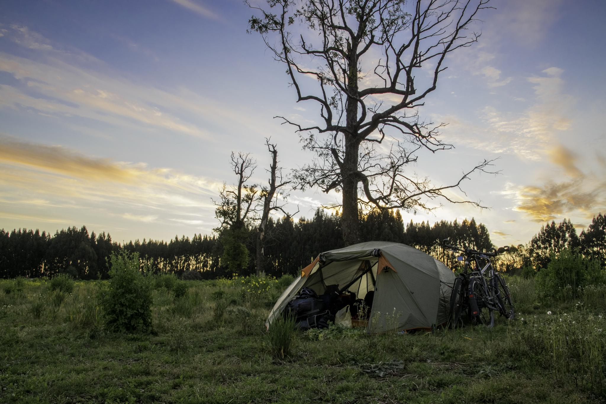 Zelten auf einer üppigen Wiese