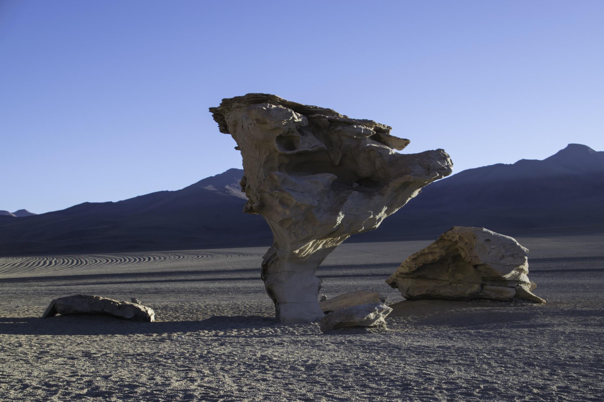 Arbol de Piedra (Baum aus Sandstein)