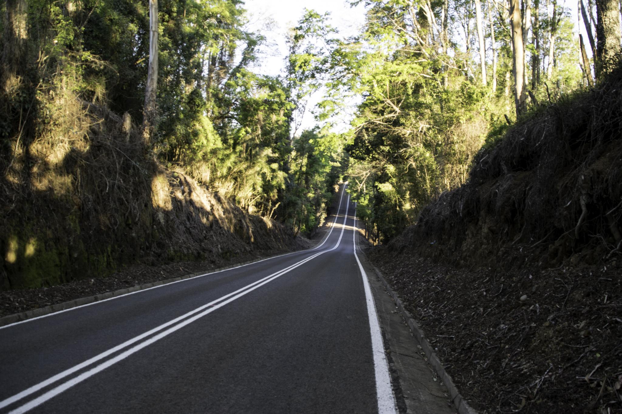 Achterbahn-Strasse