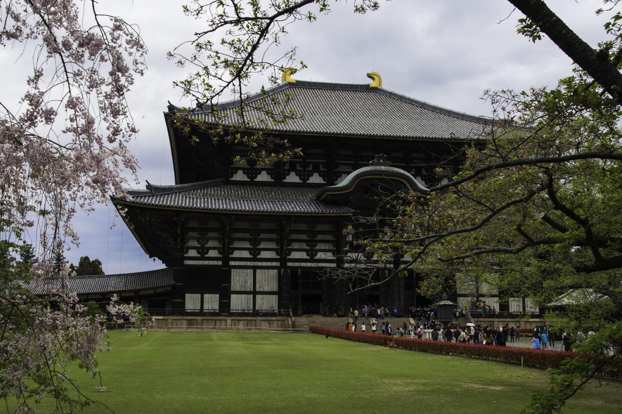 """Das grösste Holzgebäude der Welt, der """"Tōdai-ji""""-Tempel"""