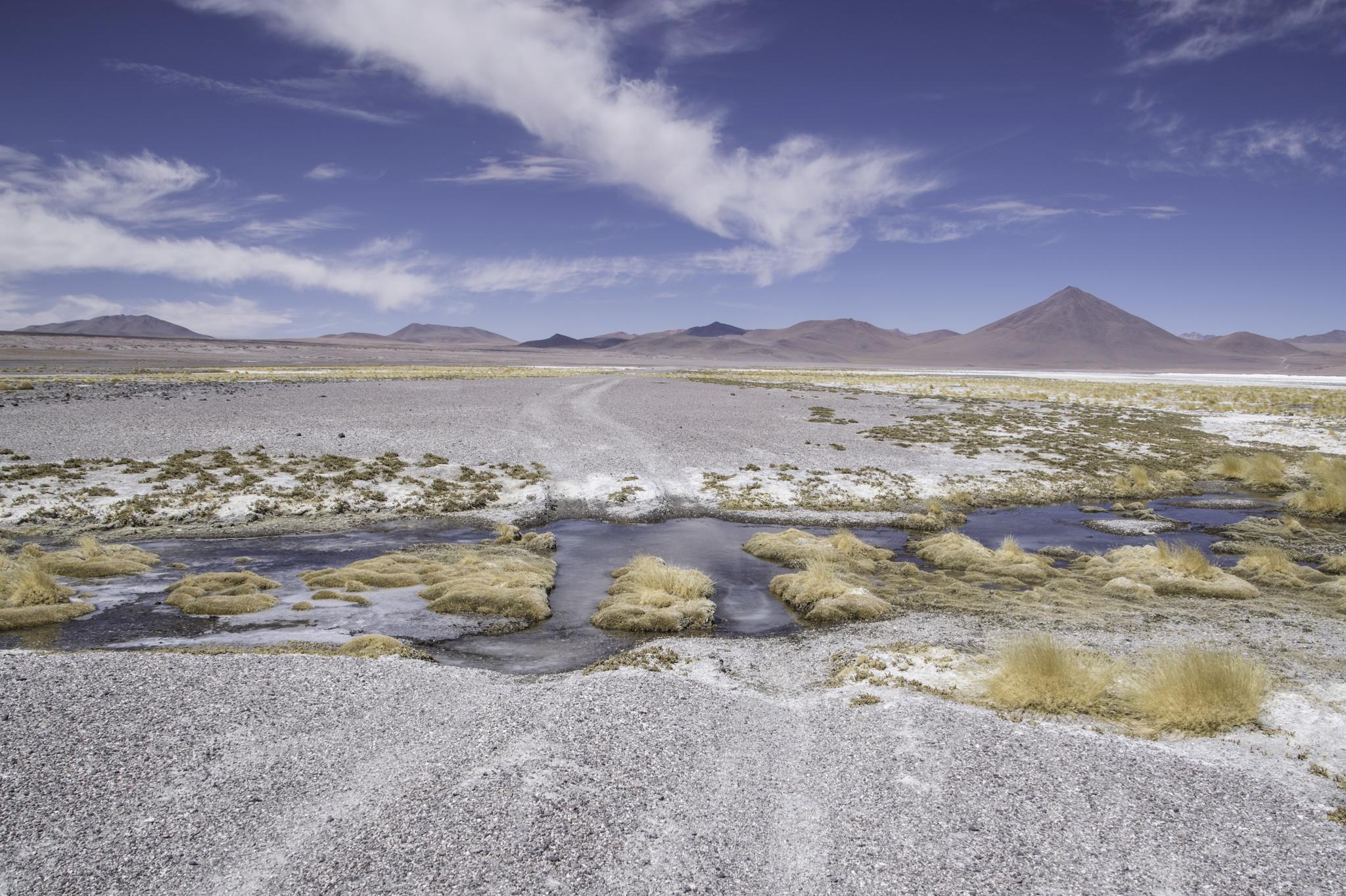 Eine der vielen Flussdurchquerungen in Bolivien