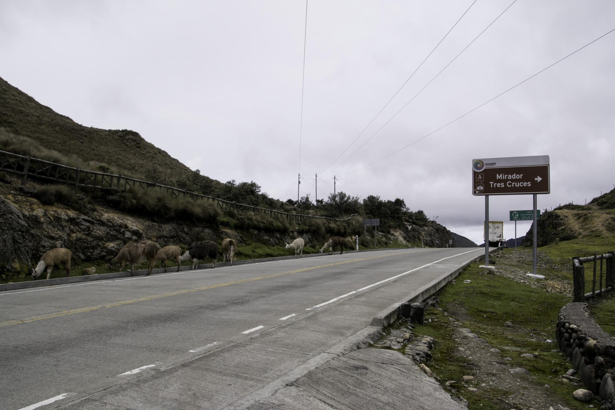 "Passhöhe ""Tres Cruces"" - 4167 m.ü.M."