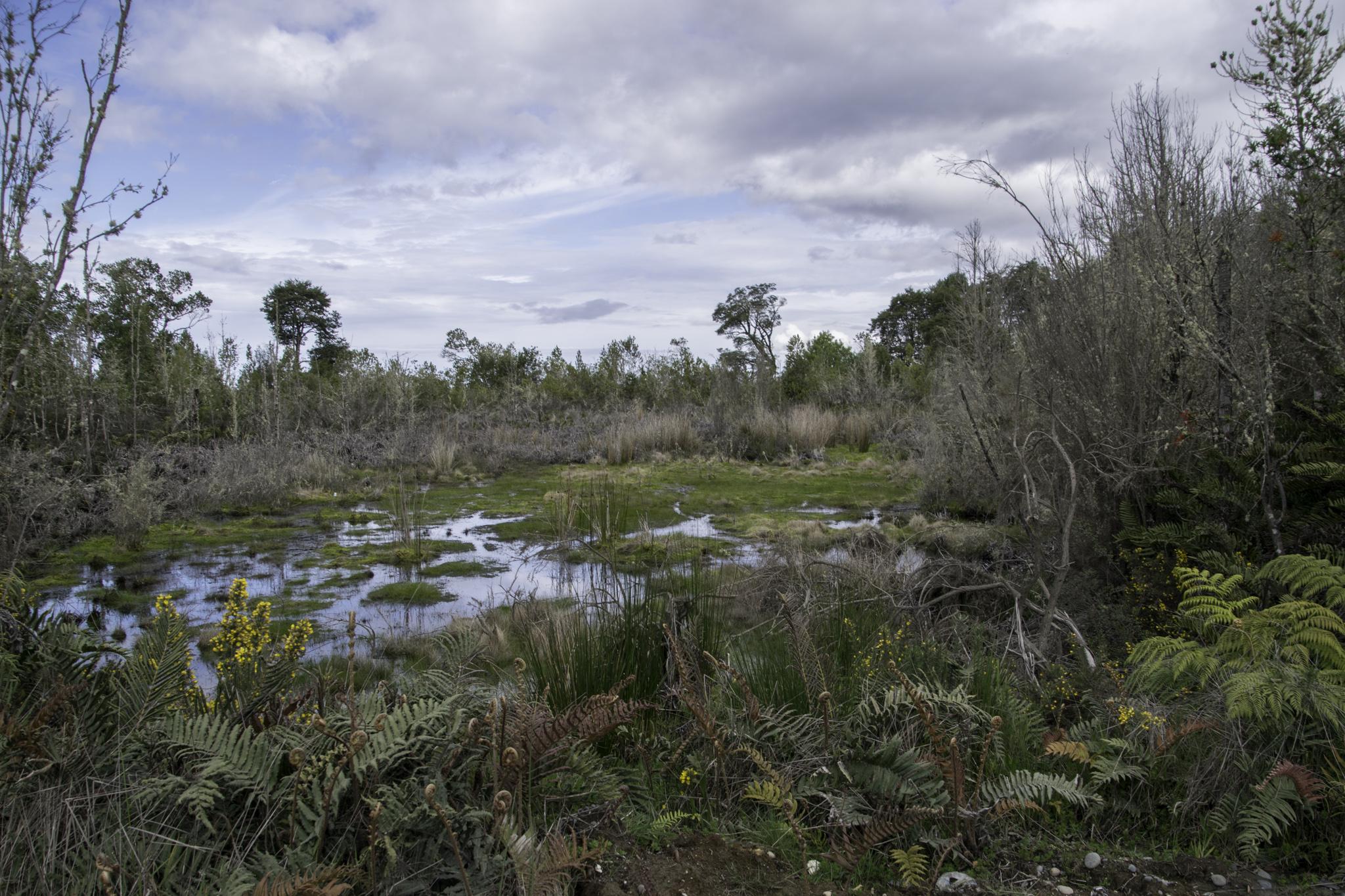 Spuren vom vielen Regen auf Chiloé