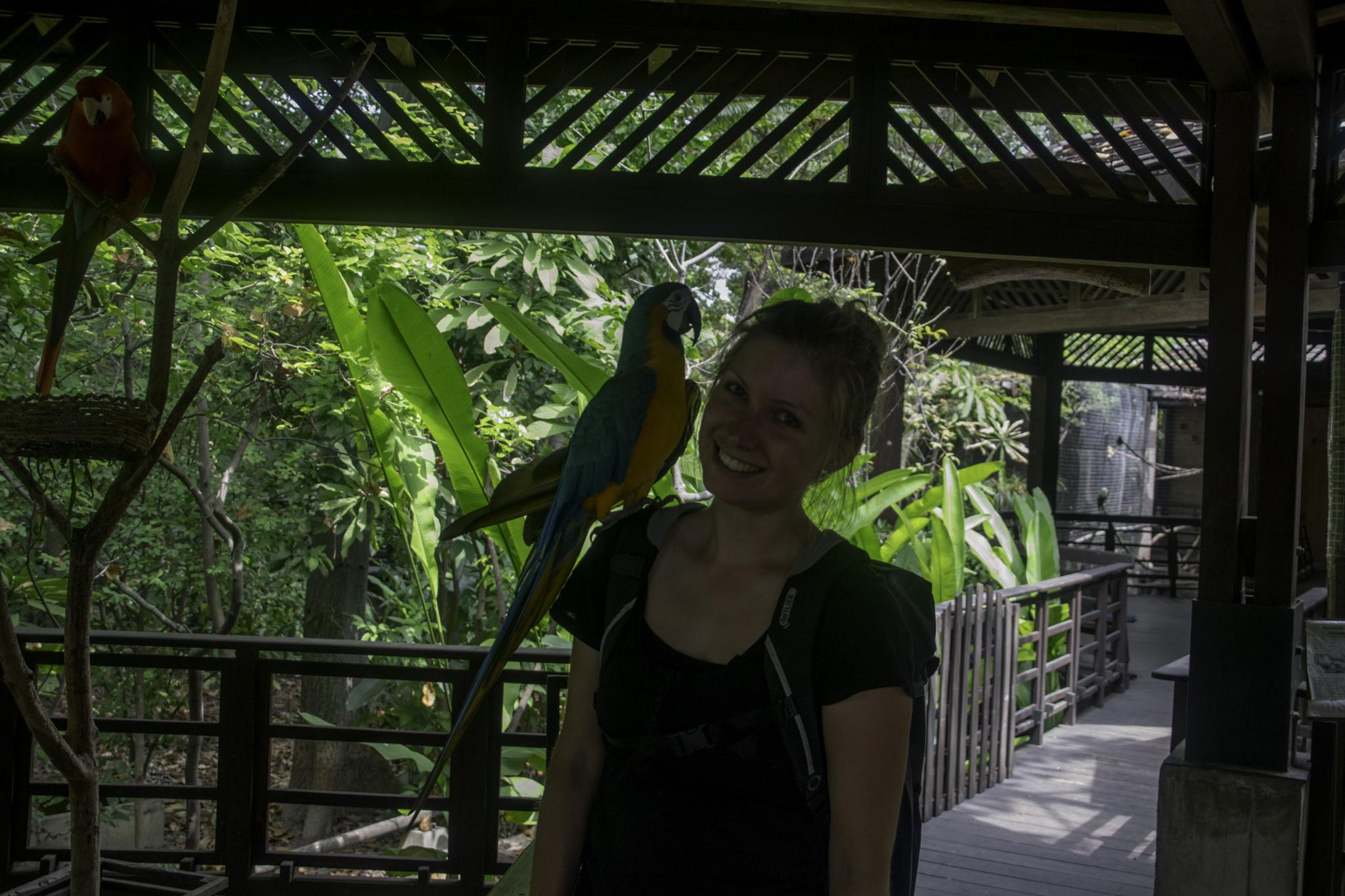 "Tierpark des ""Parque Histórico"" in Guayaquil"