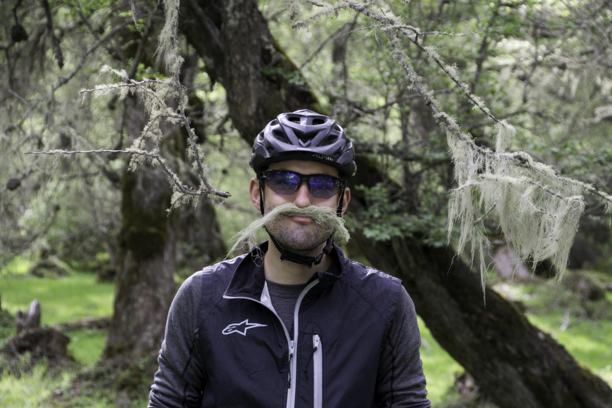 Michi im Flechtenwald