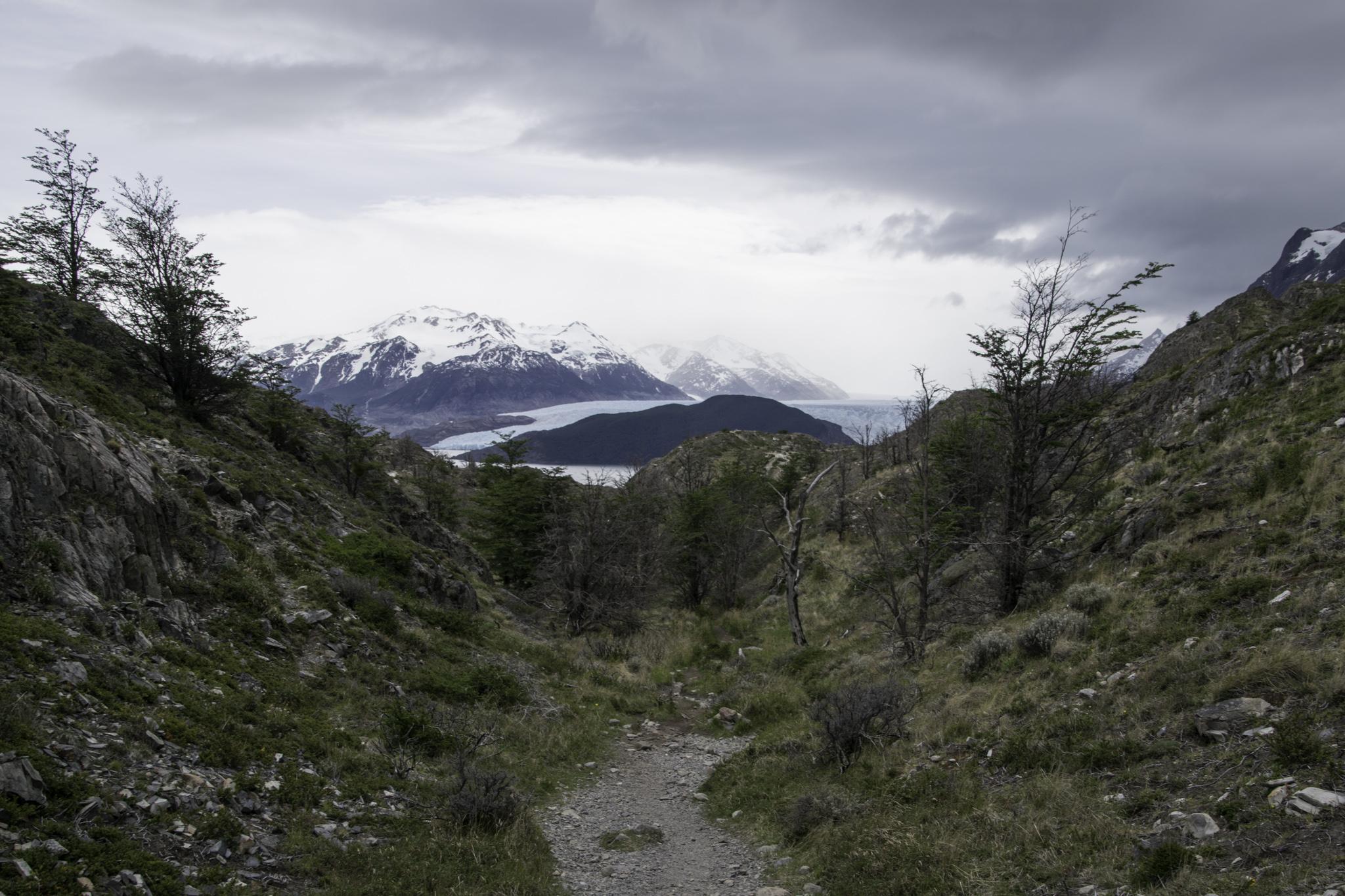 Wanderweg zum Grey-Gletscher