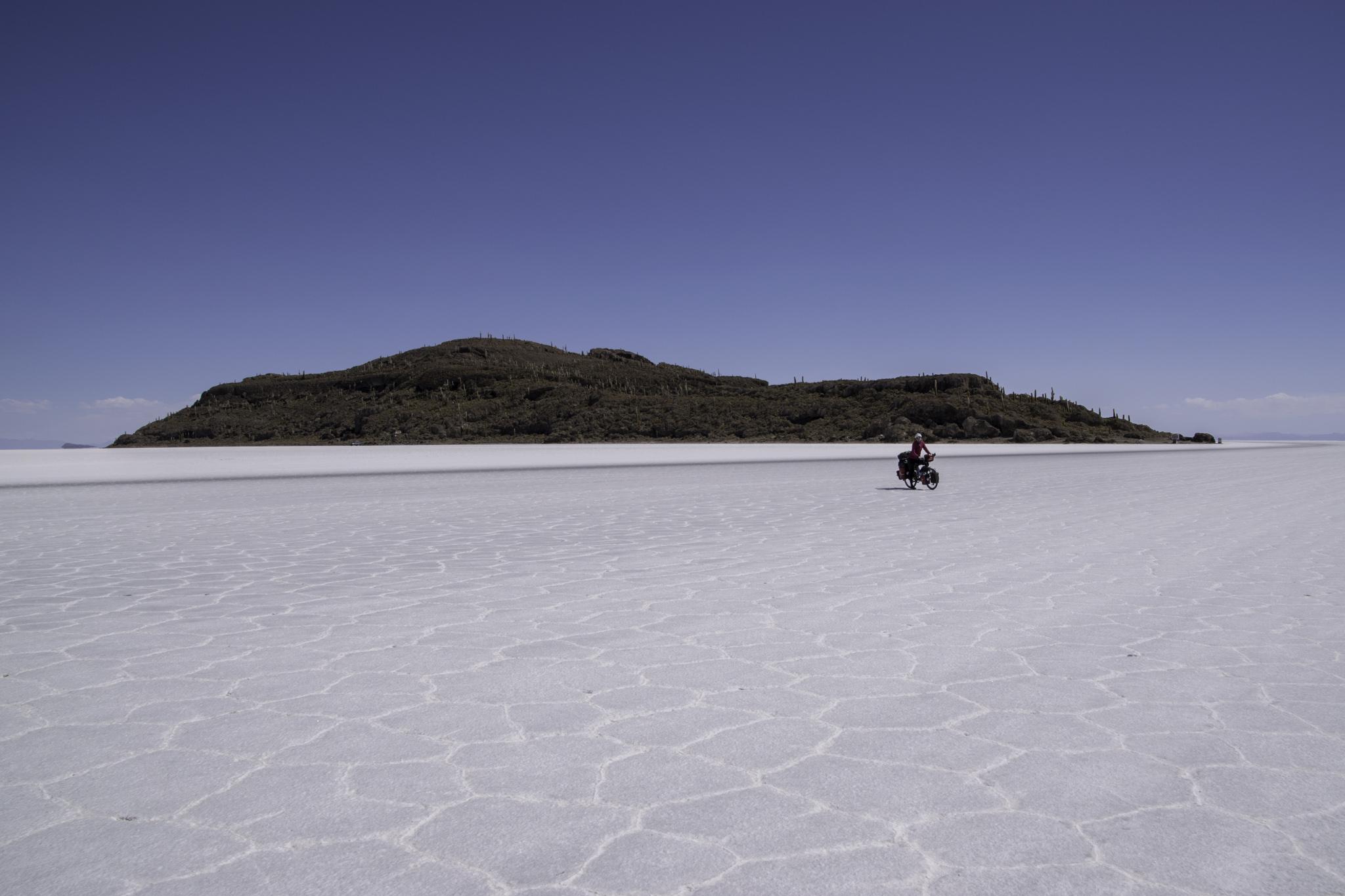 Isla Incahuasi, mitten in der Salzwüste