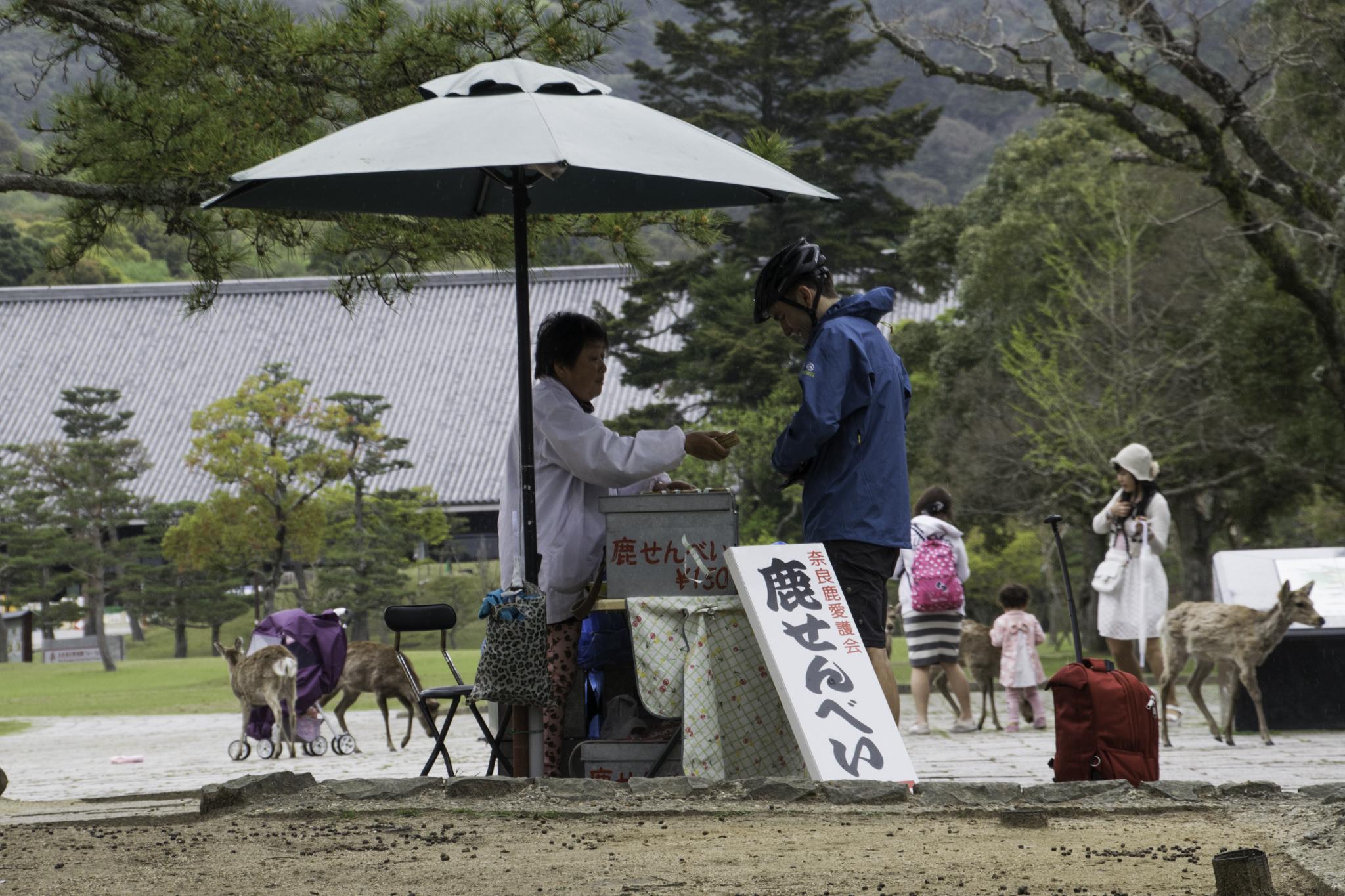 Der wichtigste Einkauf in Nara: Biscuits für die Hirsche