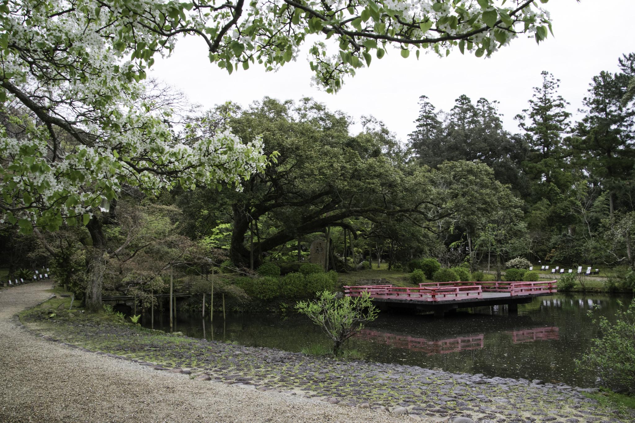 Botanischer Garten in Nara