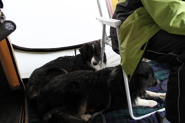 Amy und Ayline im Zelt