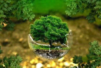 La Villa et l'environnement