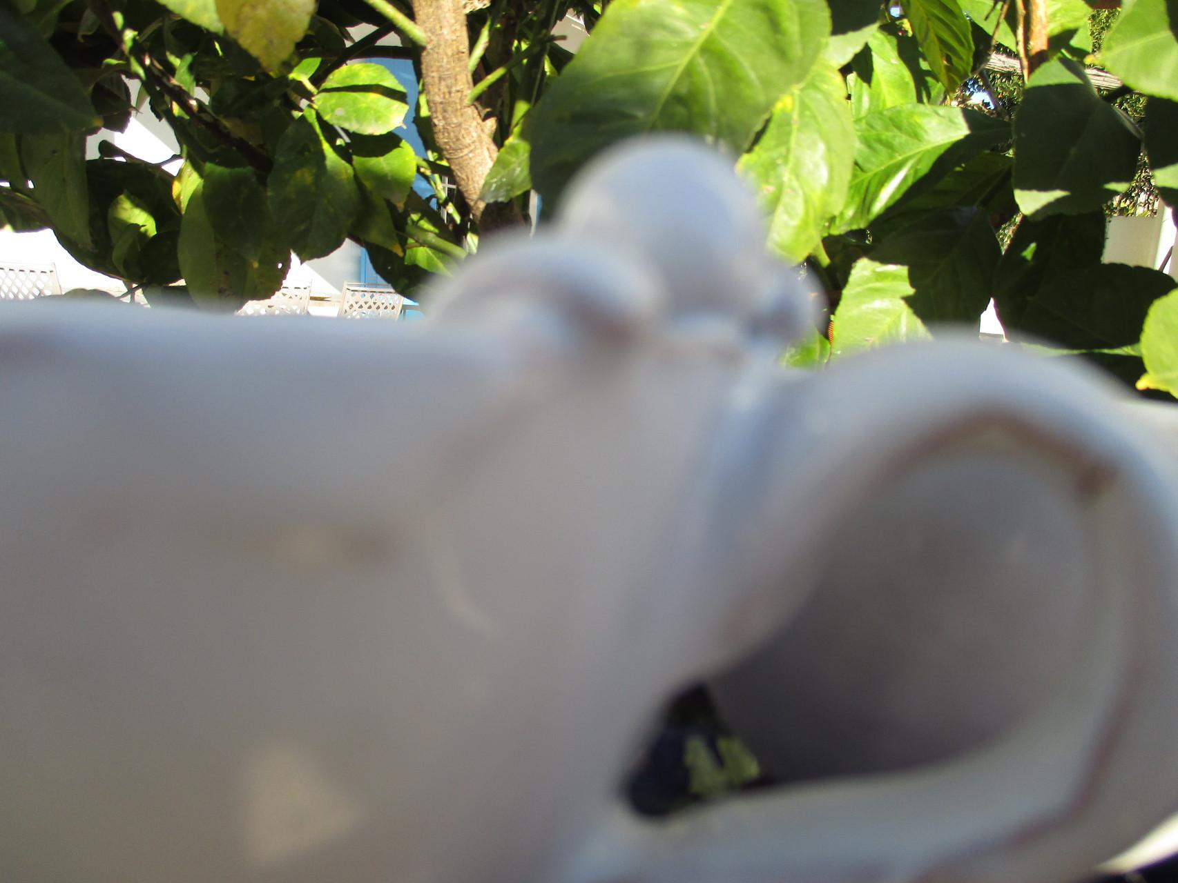 Scugnizzo su tazzina in ceramica. Le Terre di Rò
