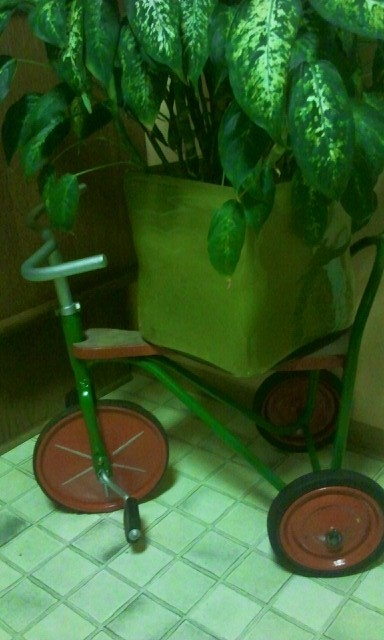 Unbekannt - Dreirad