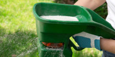 How To Fix A Bare Lawn Spot