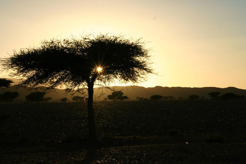 lever de soleil;