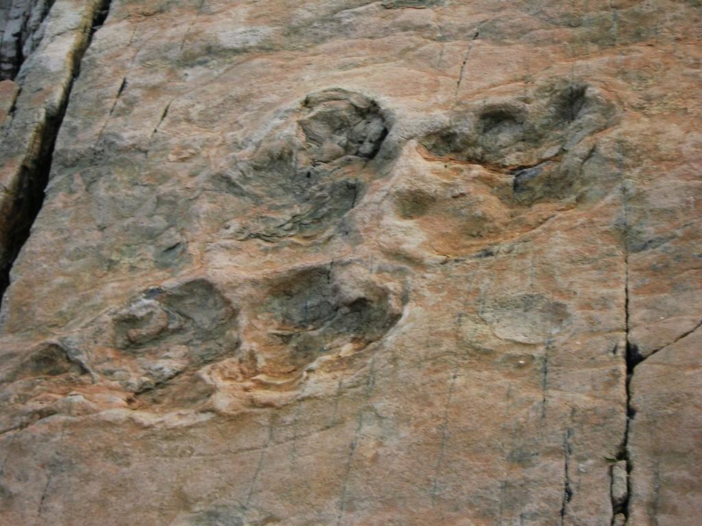 EMOSSON - traces de dinosaures