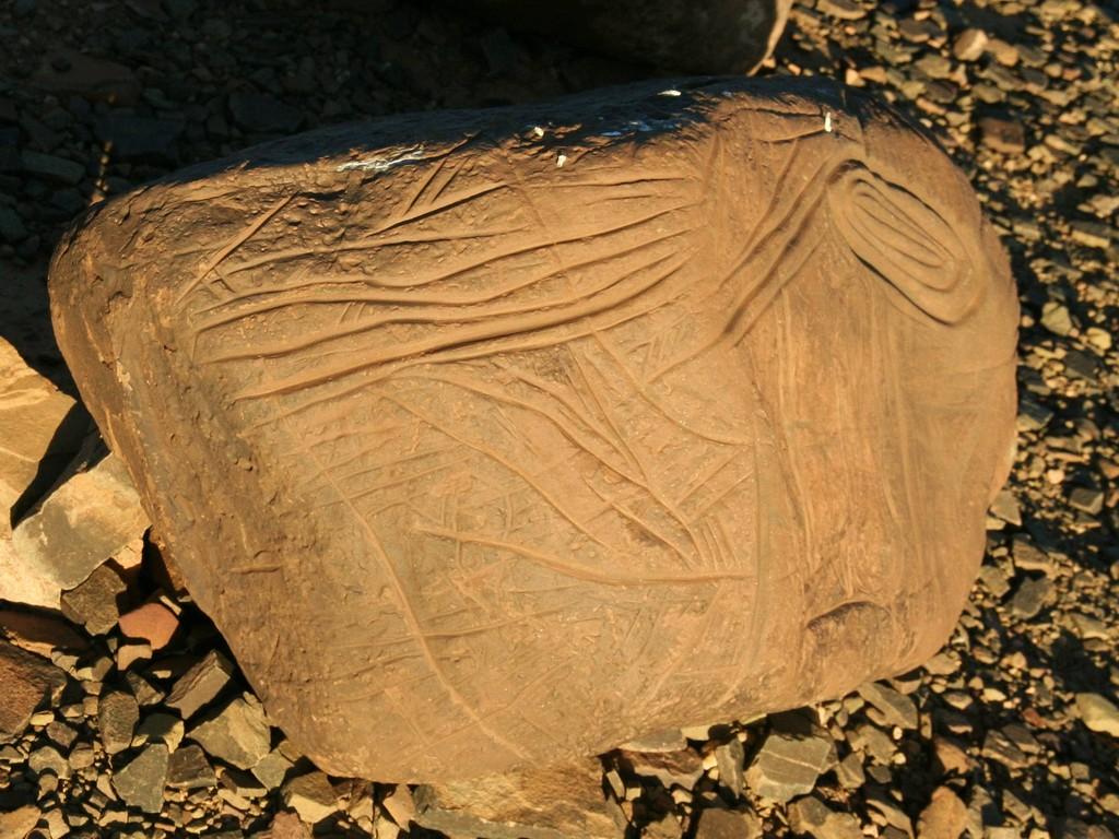 sur le site préhistorique ....