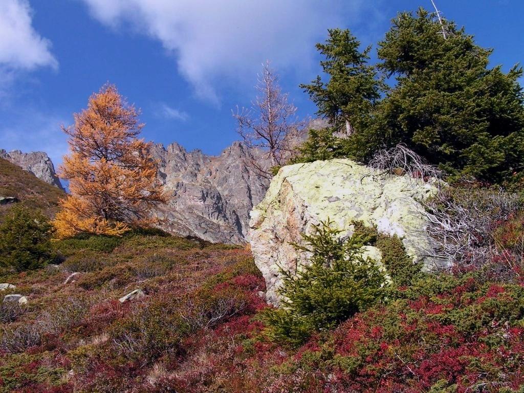 balades d'automne